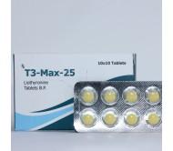 T3-Max-25